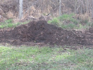 The 'pile' of great manure!