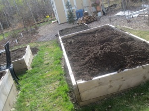 garden boxes, with extra amendments for a bed in progress